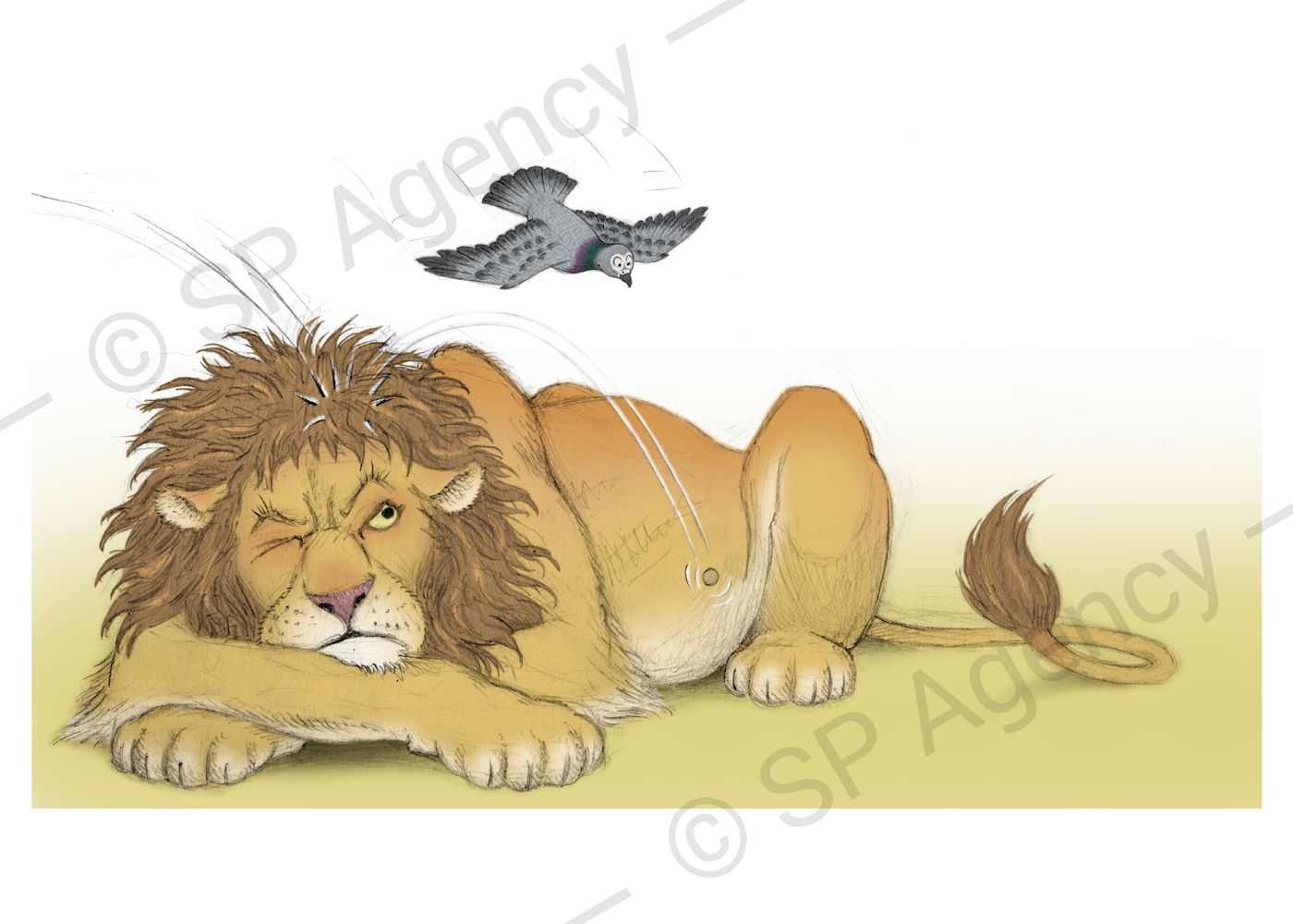 Percy---Lion