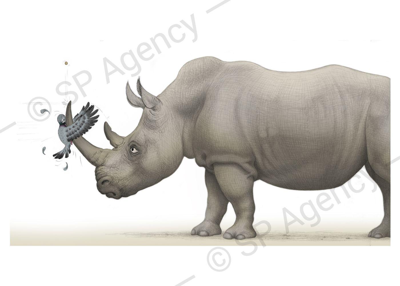 Percy---Rhino
