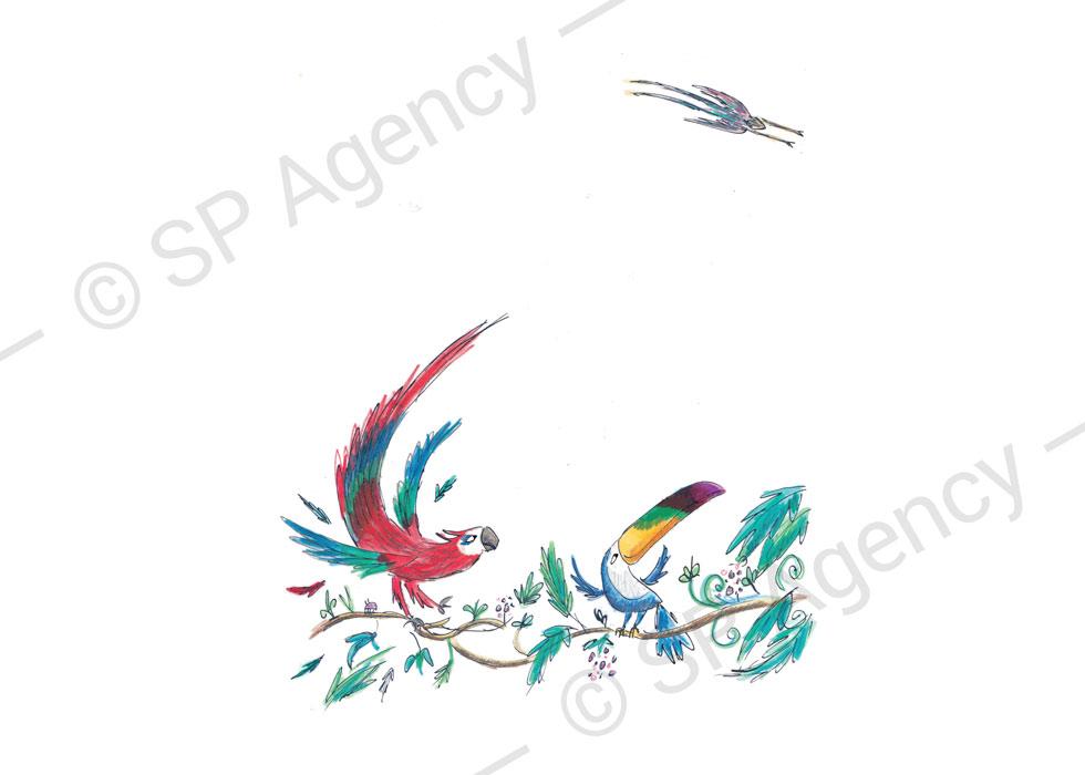SP-Agency-Pip-Carter-Image3