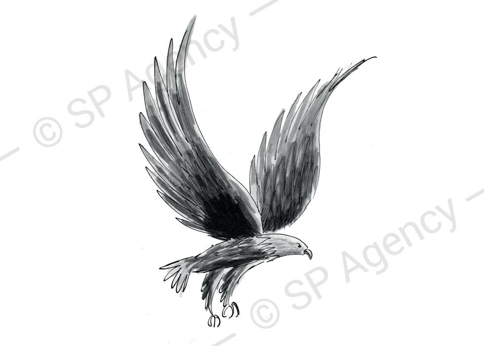 SP-Agency-Pip-Carter-Image4B